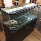 幅120cmガラス水槽と専用台のセット