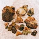 水槽用♡木化石 約3.7キロ