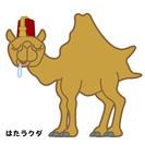 ホールスタッフ【苫小牧】希望シフト制/時給950円
