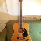 【TOKAI】キャッツアイギター CE-180 ペグ、ブリッジピン...