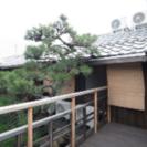 京都 今出川通りのオシャレな町家シェアハウス!礼金不要です!