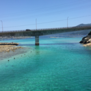 高知県 シュノーケリング 釣り 素潜り 等々