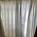 白色 抗菌防臭保温、機能性 レースカーテン3枚
