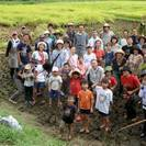 お米づくり体験(田植えから稲刈りまで)