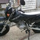バイクホンダ XR50   希少☆