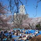 4月8日(土)16時~桜木町でお花見♪男性11名女性10名参加予定...