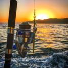 海、船釣り