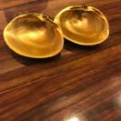 貝殻の置物
