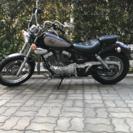 ヤマハ  ビラーゴ250cc  ノーマル車、自賠責、平成30年4月...