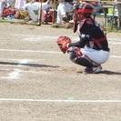 静岡軟式野球Club静岡Fellows