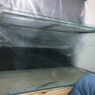 水槽 大型水槽 アロワナ 熱帯魚 1200水槽 120水槽