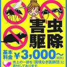 害虫の被害にお困りなら専門業者べんちゃんにお任せください!!