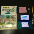 Nintendo 3DS 本体 どうぶつの森 セット