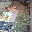 〈中央区〉庭をガーデニングしたい!