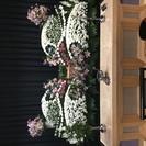 安城市総合斎苑限定・小さな負担で花いっぱいの家族葬