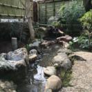 庭作り・ウッドデッキ、フェンス・外構工事【お見積り無料】 − 神奈川県