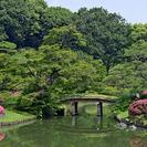 5月10日(5/10)  この時期にしか見れない幻想的な世界!庭園...