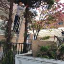 庭の手入れ リフォーム専門店 つちや造園