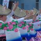 ほたる連、阿波踊り(踊り、お囃子)メンバー募集