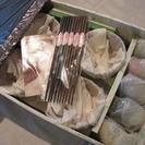 桂由美 お椀小鉢セット