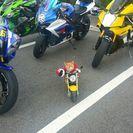 バイクメンバー募集してます!