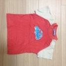 【ファミリア】半袖Tシャツ サイズ80