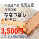 北海道産ななつぼし 10キロ☆農家直送