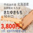 北海道産もち米 きたゆきもち 10キロ☆農家直送