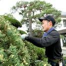 【至急大募集】日当3万円可能!植木伐採!10名募集!