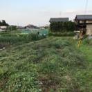 家庭菜園レンタル(値下げ) 約85平方m - 大津市