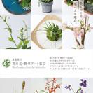 樹脂粘土 野の花・野草アート 新横浜教室