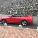 フォードマスタング オープン