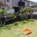 お庭の草刈り、掃除等