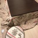 コタツ+掛け布団とクッションセット
