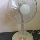 扇風機 リビング扇 CSBF-3009