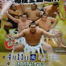 大相撲三島場所ポスター