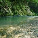 6月11日(6/11)  秋川渓谷へ気持ちいい午前中に!毎回大好評...