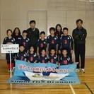 【6月4日・10日】ドッジボール体験会のお知らせ(小学生、集まれ!!)