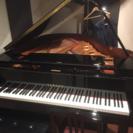 ピアノを弾ける人同士で語りませんか?(20代限定)