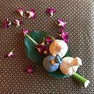 和草で作るハーブボール 6月17日(土)