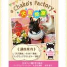 犬服教室🐾Chako's Factory🍒駒川文化センター教室のご案内