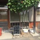 【急募】定食屋さんのパート