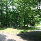 那須町 閑静な別荘地です