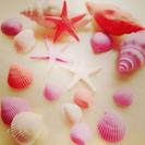 【6/19(月)クレイで作る小さなサマービーチ】の画像