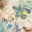 【6/19(月)クレイで作る小さなサマービーチ】 - 木更津市