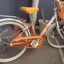 子供用自転車 ブリヂストンエコパル20インチ