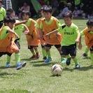 ステラサッカースクール 成田教室