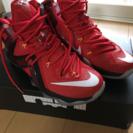 Nike LEBRON ELITE