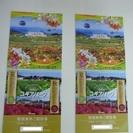 滋賀県 箱館山 コキアパーク 特別無料ご招待券 2枚1組 売ります
