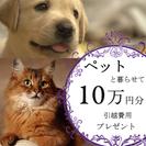 ★★ 10万円分 プレゼント ★★ ペット複数OK|無料 wi-fi